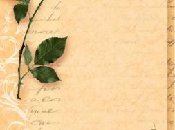 Любовное письмо парню